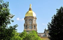 The golden dome (2)